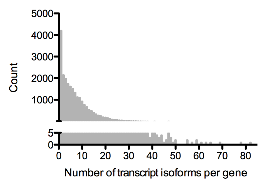 Number of transcript isoforms per gene in human cells